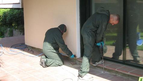 Técnico de tratamiento de la infestación de termitas